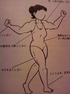 拳法少女!!