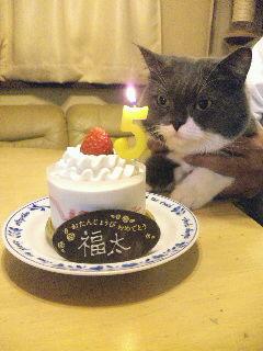悲しい誕生日
